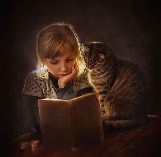 readin_cat