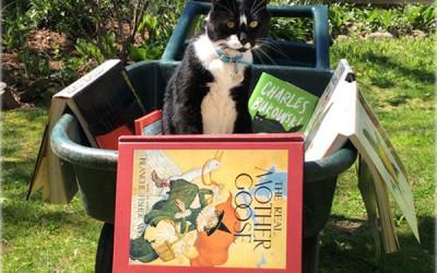 Что почитать в отпуске? 7 увлекательных книг для отдыха