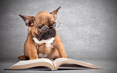 5 книг о бизнесе для тех, кто не любит читать
