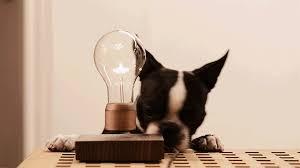 Сколько нужно дизайнерски мыслящих людей для того, чтобы поменять электрическую лампочку?