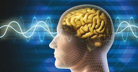 Как улучшить работу головного мозга: советы экспертов