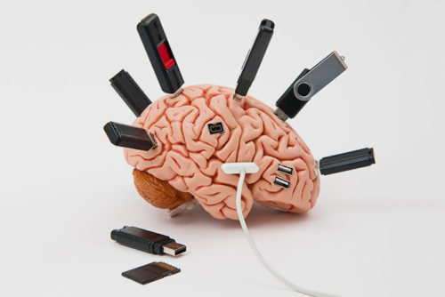 5 особенностей человеческого мозга