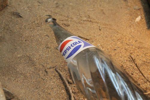 книга одним словом об названии Pepsi