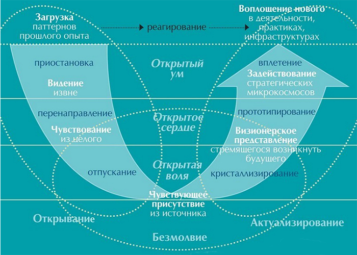 Схема теории U