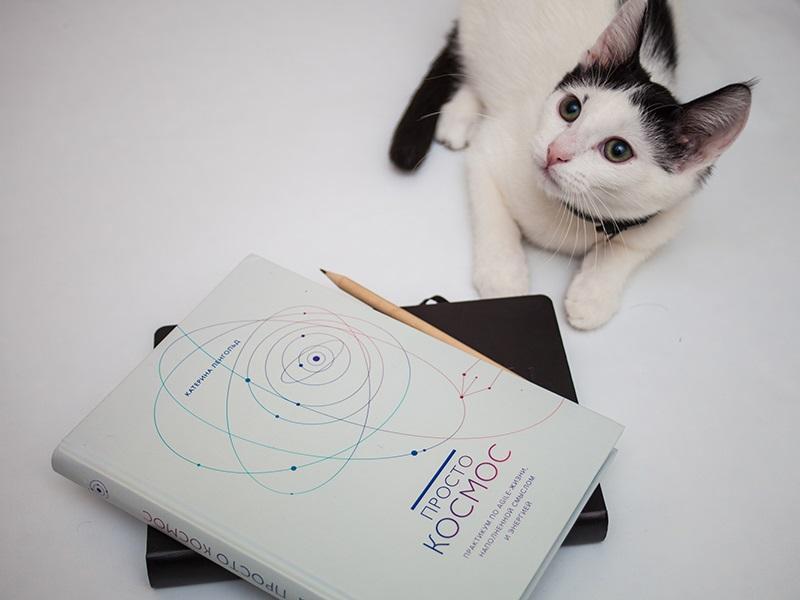 Agile планирование на практике: 4 полезные техники из книги «Просто космос»