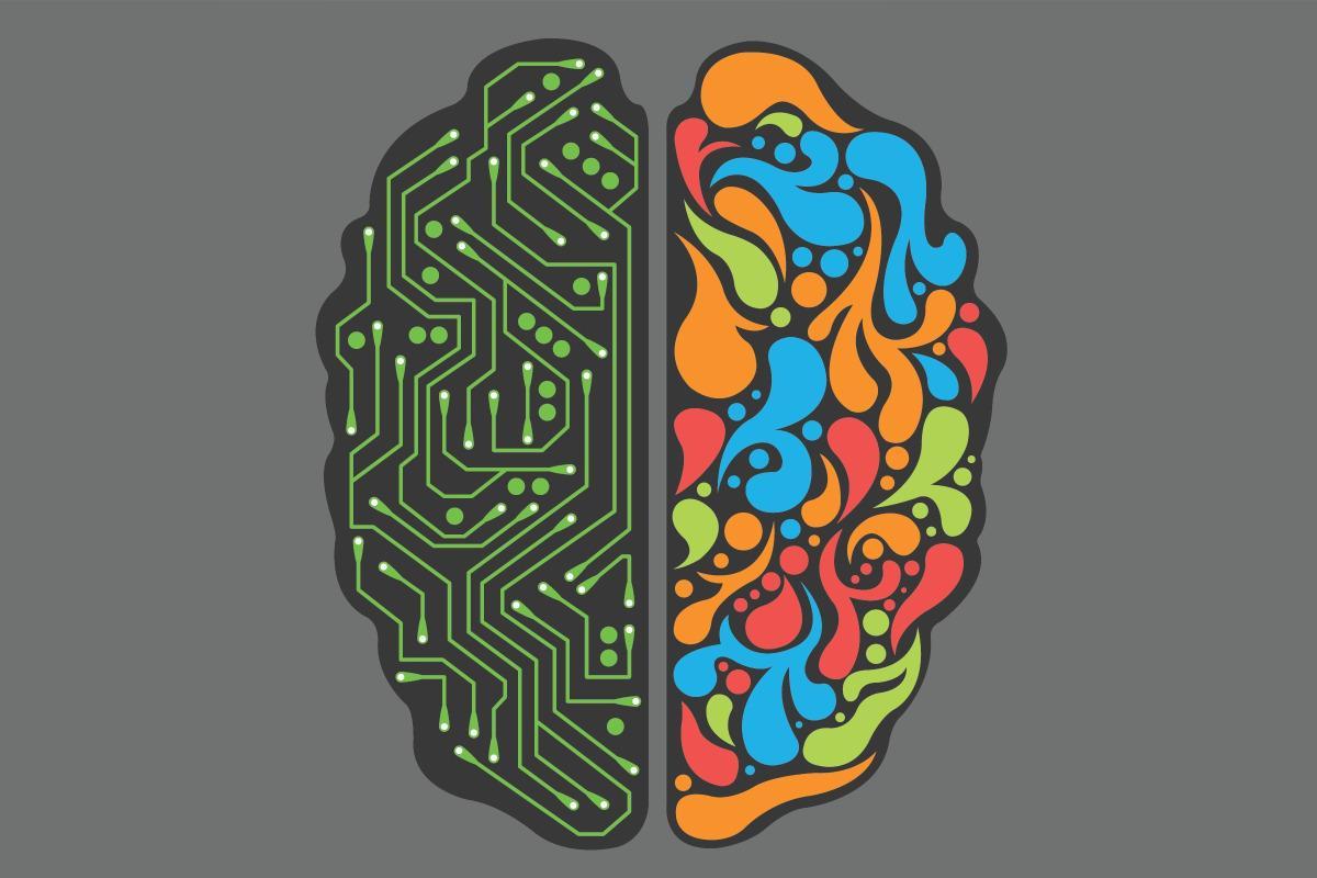 когнитывные системы мозга