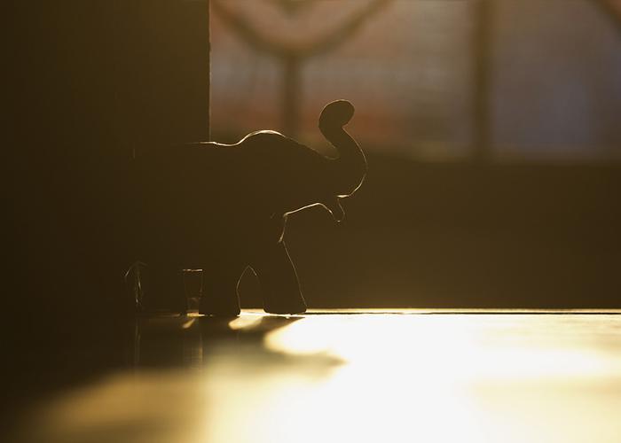 Разделив слона пополам, вы не получите двух маленьких слоников.