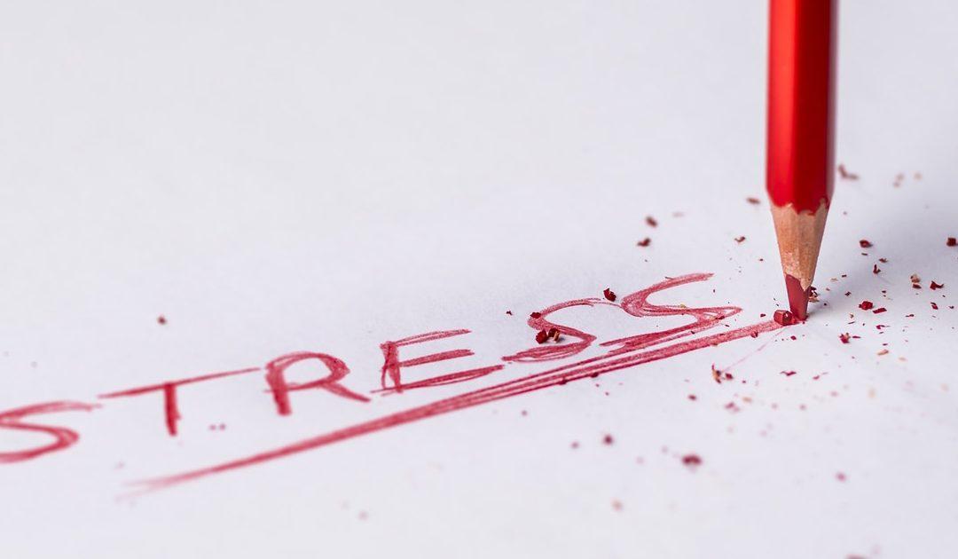 Книга «Без стресса» Митху Сторони: хватит страдать, пора меняться!