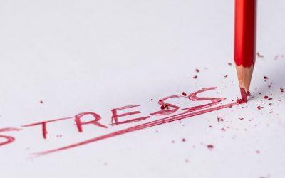 Без стресса Митху Сторони