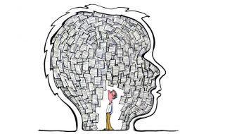 Книга «Организованный ум» Дэниел Левитин: как полюбить свой мозг